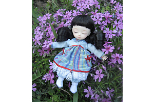 Куклы Аи. Домашние фото