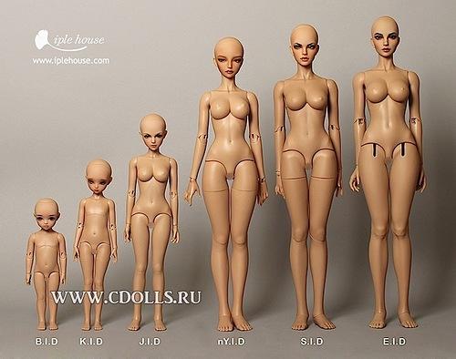Сравнительные пропорции бжд-кукол компании Иплхаус / Iplehouse и кукол бжд других производителей