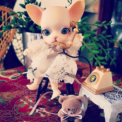 Фотографии куклы Панг-Джу Клюква Панг