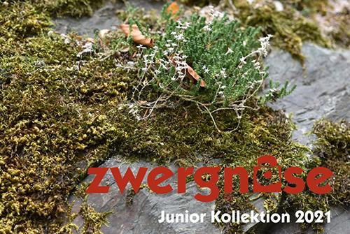 Новая коллекция кукол Zwergnase Junior 2021